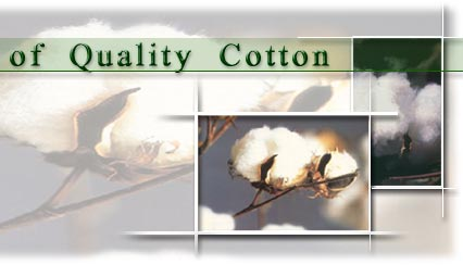 house of quality cotton